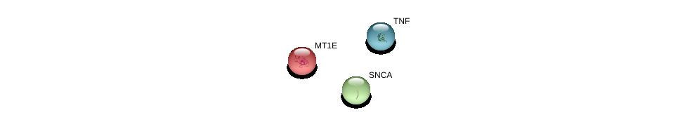 http://string-db.org/version_10/api/image/networkList?limit=0&targetmode=proteins&caller_identity=gene_cards&network_flavor=evidence&identifiers=9606.ENSP00000307706%0d%0a9606.ENSP00000338345%0d%0a9606.ENSP00000398698%0d%0a