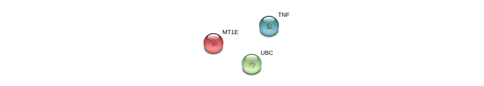 http://string-db.org/version_10/api/image/networkList?limit=0&targetmode=proteins&caller_identity=gene_cards&network_flavor=evidence&identifiers=9606.ENSP00000307706%0d%0a9606.ENSP00000344818%0d%0a9606.ENSP00000398698%0d%0a