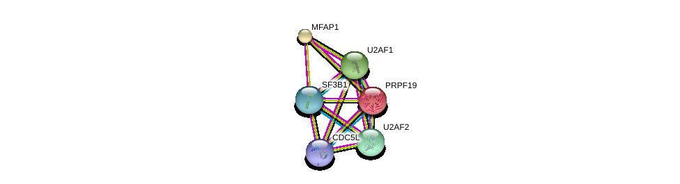 http://string-db.org/version_10/api/image/networkList?limit=0&targetmode=proteins&caller_identity=gene_cards&network_flavor=evidence&identifiers=9606.ENSP00000307863%0d%0a9606.ENSP00000291552%0d%0a9606.ENSP00000360532%0d%0a9606.ENSP00000227524%0d%0a9606.ENSP00000267812%0d%0a9606.ENSP00000335321%0d%0a