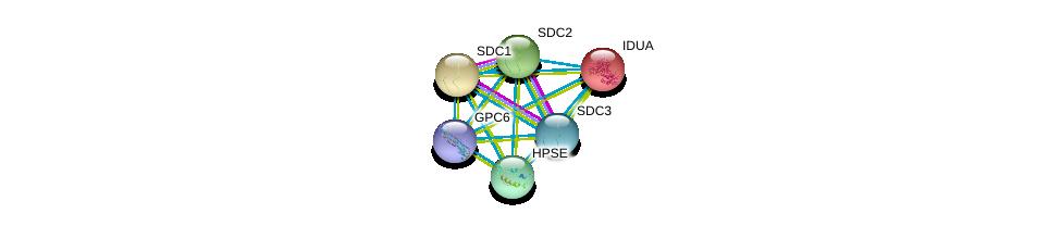 http://string-db.org/version_10/api/image/networkList?limit=0&targetmode=proteins&caller_identity=gene_cards&network_flavor=evidence&identifiers=9606.ENSP00000308107%0d%0a9606.ENSP00000247933%0d%0a9606.ENSP00000344468%0d%0a9606.ENSP00000254351%0d%0a9606.ENSP00000366246%0d%0a9606.ENSP00000307046%0d%0a