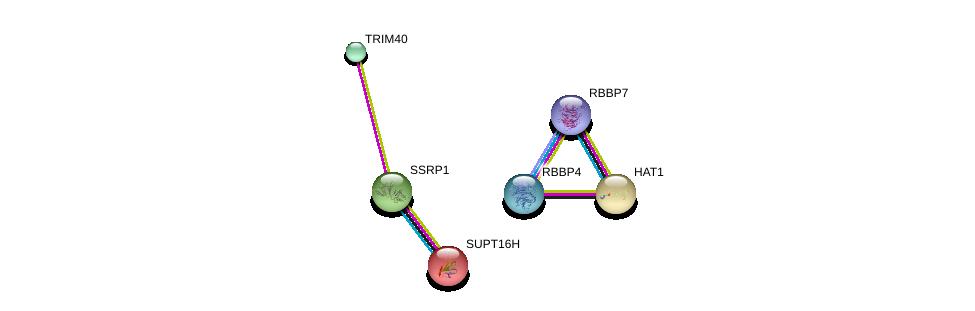 http://string-db.org/version_10/api/image/networkList?limit=0&targetmode=proteins&caller_identity=gene_cards&network_flavor=evidence&identifiers=9606.ENSP00000308310%0d%0a9606.ENSP00000278412%0d%0a9606.ENSP00000216297%0d%0a9606.ENSP00000264108%0d%0a9606.ENSP00000362592%0d%0a9606.ENSP00000369424%0d%0a