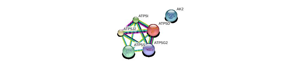http://string-db.org/version_10/api/image/networkList?limit=0&targetmode=proteins&caller_identity=gene_cards&network_flavor=evidence&identifiers=9606.ENSP00000308334%0d%0a9606.ENSP00000292475%0d%0a9606.ENSP00000346921%0d%0a9606.ENSP00000377878%0d%0a9606.ENSP00000215375%0d%0a9606.ENSP00000306003%0d%0a