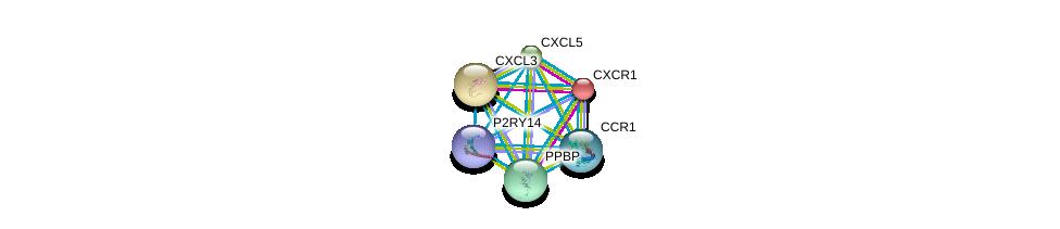 http://string-db.org/version_10/api/image/networkList?limit=0&targetmode=proteins&caller_identity=gene_cards&network_flavor=evidence&identifiers=9606.ENSP00000308361%0d%0a9606.ENSP00000296026%0d%0a9606.ENSP00000296027%0d%0a9606.ENSP00000296028%0d%0a9606.ENSP00000296140%0d%0a9606.ENSP00000295683%0d%0a