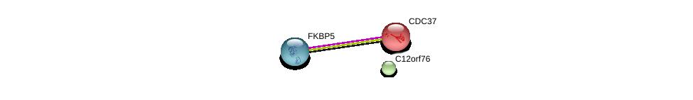 http://string-db.org/version_10/api/image/networkList?limit=0&targetmode=proteins&caller_identity=gene_cards&network_flavor=evidence&identifiers=9606.ENSP00000308368%0d%0a9606.ENSP00000338160%0d%0a9606.ENSP00000222005%0d%0a