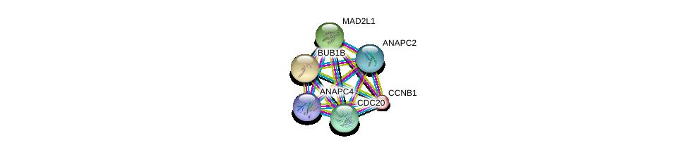 http://string-db.org/version_10/api/image/networkList?limit=0&targetmode=proteins&caller_identity=gene_cards&network_flavor=evidence&identifiers=9606.ENSP00000308450%0d%0a9606.ENSP00000287598%0d%0a9606.ENSP00000296509%0d%0a9606.ENSP00000314004%0d%0a9606.ENSP00000318775%0d%0a9606.ENSP00000256442%0d%0a