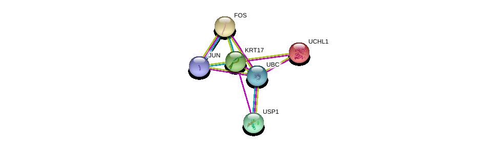 http://string-db.org/version_10/api/image/networkList?limit=0&targetmode=proteins&caller_identity=gene_cards&network_flavor=evidence&identifiers=9606.ENSP00000308452%0d%0a9606.ENSP00000360266%0d%0a9606.ENSP00000306245%0d%0a9606.ENSP00000344818%0d%0a9606.ENSP00000284440%0d%0a9606.ENSP00000343526%0d%0a