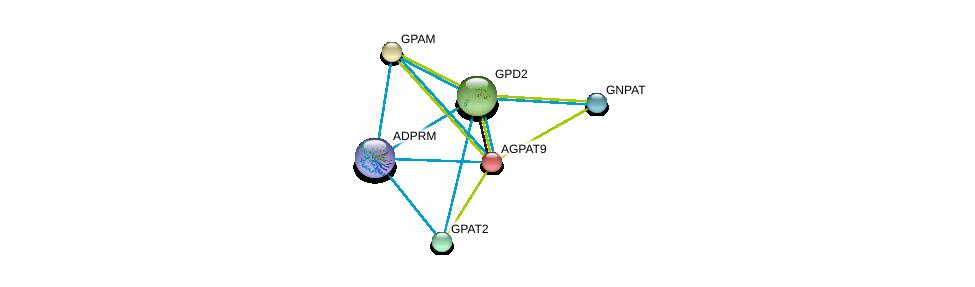 http://string-db.org/version_10/api/image/networkList?limit=0&targetmode=proteins&caller_identity=gene_cards&network_flavor=evidence&identifiers=9606.ENSP00000308610%0d%0a9606.ENSP00000264409%0d%0a9606.ENSP00000265276%0d%0a9606.ENSP00000352547%0d%0a9606.ENSP00000355607%0d%0a9606.ENSP00000369099%0d%0a