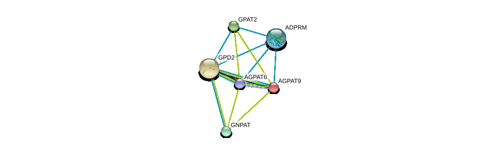 http://string-db.org/version_10/api/image/networkList?limit=0&targetmode=proteins&caller_identity=gene_cards&network_flavor=evidence&identifiers=9606.ENSP00000308610%0d%0a9606.ENSP00000380184%0d%0a9606.ENSP00000352547%0d%0a9606.ENSP00000264409%0d%0a9606.ENSP00000369099%0d%0a9606.ENSP00000355607%0d%0a