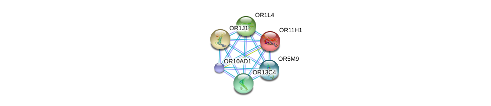 http://string-db.org/version_10/api/image/networkList?limit=0&targetmode=proteins&caller_identity=gene_cards&network_flavor=evidence&identifiers=9606.ENSP00000308689%0d%0a9606.ENSP00000252835%0d%0a9606.ENSP00000259357%0d%0a9606.ENSP00000259466%0d%0a9606.ENSP00000277216%0d%0a9606.ENSP00000279791%0d%0a