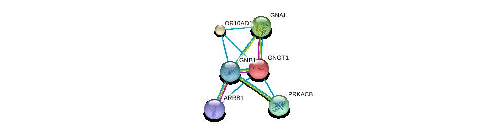 http://string-db.org/version_10/api/image/networkList?limit=0&targetmode=proteins&caller_identity=gene_cards&network_flavor=evidence&identifiers=9606.ENSP00000308689%0d%0a9606.ENSP00000334051%0d%0a9606.ENSP00000367869%0d%0a9606.ENSP00000248572%0d%0a9606.ENSP00000359719%0d%0a9606.ENSP00000409581%0d%0a