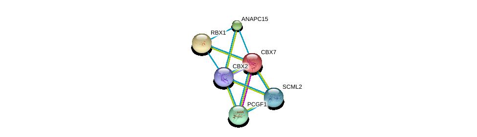 http://string-db.org/version_10/api/image/networkList?limit=0&targetmode=proteins&caller_identity=gene_cards&network_flavor=evidence&identifiers=9606.ENSP00000308750%0d%0a9606.ENSP00000216133%0d%0a9606.ENSP00000216225%0d%0a9606.ENSP00000227618%0d%0a9606.ENSP00000233630%0d%0a9606.ENSP00000251900%0d%0a