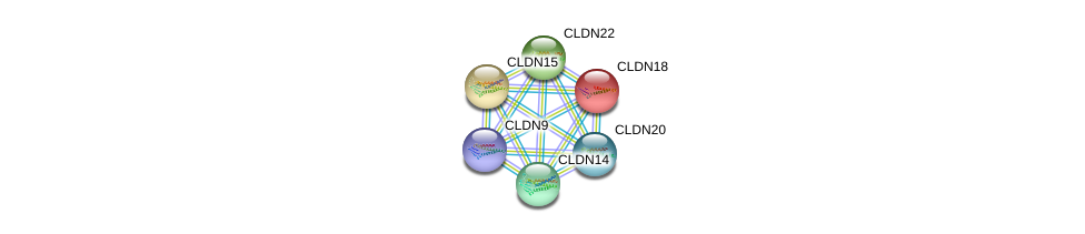 http://string-db.org/version_10/api/image/networkList?limit=0&targetmode=proteins&caller_identity=gene_cards&network_flavor=evidence&identifiers=9606.ENSP00000308870%0d%0a9606.ENSP00000183605%0d%0a9606.ENSP00000318113%0d%0a9606.ENSP00000339292%0d%0a9606.ENSP00000356133%0d%0a9606.ENSP00000398017%0d%0a