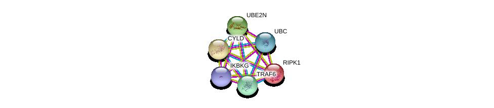 http://string-db.org/version_10/api/image/networkList?limit=0&targetmode=proteins&caller_identity=gene_cards&network_flavor=evidence&identifiers=9606.ENSP00000308928%0d%0a9606.ENSP00000358622%0d%0a9606.ENSP00000344818%0d%0a9606.ENSP00000259808%0d%0a9606.ENSP00000337853%0d%0a9606.ENSP00000316176%0d%0a