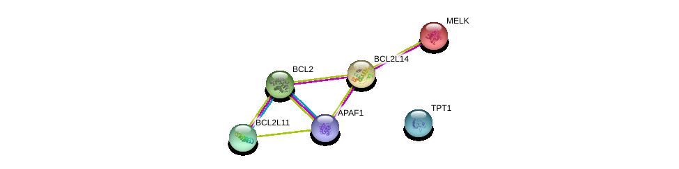 http://string-db.org/version_10/api/image/networkList?limit=0&targetmode=proteins&caller_identity=gene_cards&network_flavor=evidence&identifiers=9606.ENSP00000309132%0d%0a9606.ENSP00000448165%0d%0a9606.ENSP00000376943%0d%0a9606.ENSP00000431872%0d%0a9606.ENSP00000298048%0d%0a9606.ENSP00000329623%0d%0a