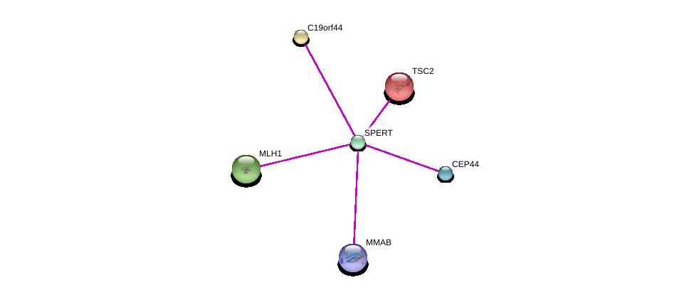 http://string-db.org/version_10/api/image/networkList?limit=0&targetmode=proteins&caller_identity=gene_cards&network_flavor=evidence&identifiers=9606.ENSP00000309189%0d%0a9606.ENSP00000219476%0d%0a9606.ENSP00000389427%0d%0a9606.ENSP00000231790%0d%0a9606.ENSP00000445920%0d%0a9606.ENSP00000221671%0d%0a