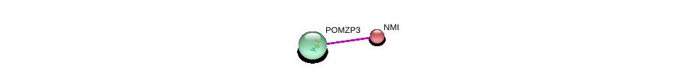 http://string-db.org/version_10/api/image/networkList?limit=0&targetmode=proteins&caller_identity=gene_cards&network_flavor=evidence&identifiers=9606.ENSP00000309233%0d%0a9606.ENSP00000243346%0d%0a