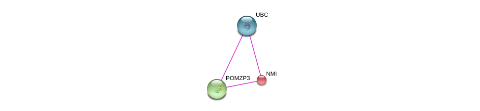 http://string-db.org/version_10/api/image/networkList?limit=0&targetmode=proteins&caller_identity=gene_cards&network_flavor=evidence&identifiers=9606.ENSP00000309233%0d%0a9606.ENSP00000243346%0d%0a9606.ENSP00000344818%0d%0a