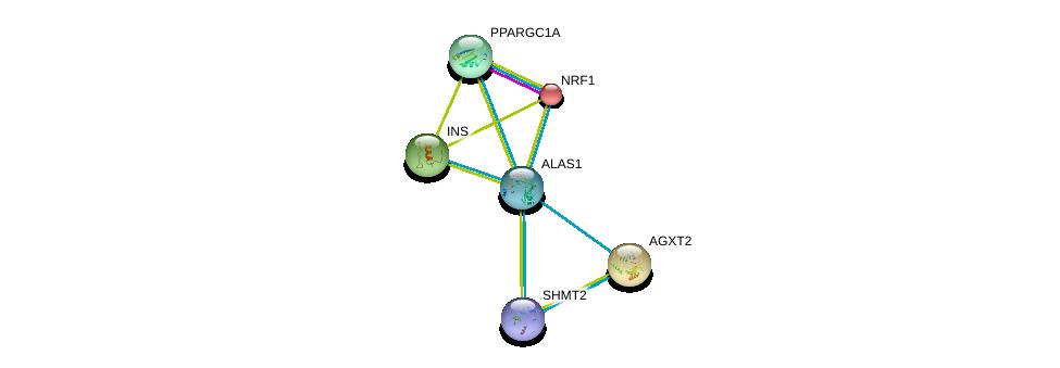 http://string-db.org/version_10/api/image/networkList?limit=0&targetmode=proteins&caller_identity=gene_cards&network_flavor=evidence&identifiers=9606.ENSP00000309259%0d%0a9606.ENSP00000250971%0d%0a9606.ENSP00000231420%0d%0a9606.ENSP00000264867%0d%0a9606.ENSP00000223190%0d%0a9606.ENSP00000333667%0d%0a