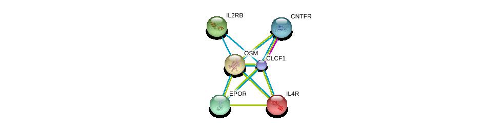 http://string-db.org/version_10/api/image/networkList?limit=0&targetmode=proteins&caller_identity=gene_cards&network_flavor=evidence&identifiers=9606.ENSP00000309338%0d%0a9606.ENSP00000242338%0d%0a9606.ENSP00000170630%0d%0a9606.ENSP00000215781%0d%0a9606.ENSP00000216223%0d%0a9606.ENSP00000222139%0d%0a