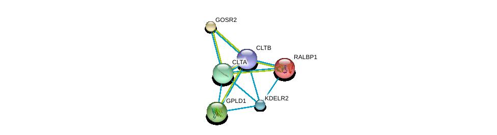 http://string-db.org/version_10/api/image/networkList?limit=0&targetmode=proteins&caller_identity=gene_cards&network_flavor=evidence&identifiers=9606.ENSP00000309415%0d%0a9606.ENSP00000019317%0d%0a9606.ENSP00000225567%0d%0a9606.ENSP00000230036%0d%0a9606.ENSP00000242285%0d%0a9606.ENSP00000258739%0d%0a