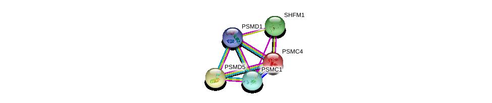 http://string-db.org/version_10/api/image/networkList?limit=0&targetmode=proteins&caller_identity=gene_cards&network_flavor=evidence&identifiers=9606.ENSP00000309474%0d%0a9606.ENSP00000157812%0d%0a9606.ENSP00000210313%0d%0a9606.ENSP00000248566%0d%0a9606.ENSP00000248566%0d%0a9606.ENSP00000261303%0d%0a