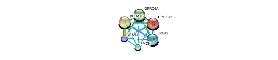 http://string-db.org/version_10/api/image/networkList?limit=0&targetmode=proteins&caller_identity=gene_cards&network_flavor=evidence&identifiers=9606.ENSP00000309493%0d%0a9606.ENSP00000352839%0d%0a9606.ENSP00000306662%0d%0a9606.ENSP00000217270%0d%0a9606.ENSP00000351755%0d%0a9606.ENSP00000332225%0d%0a