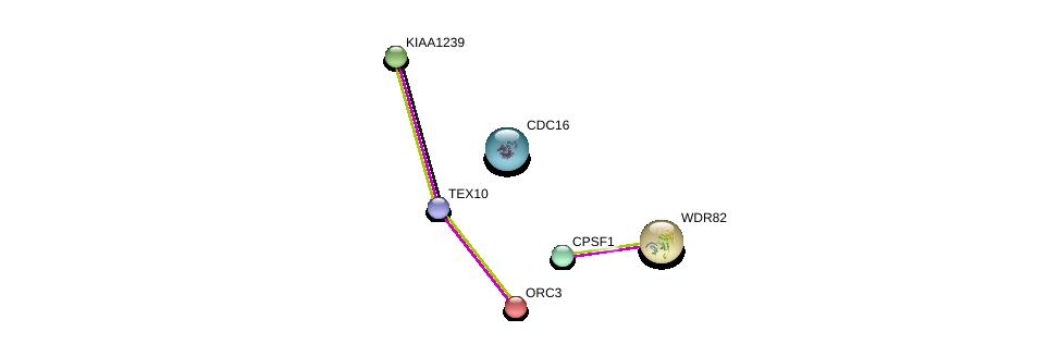 http://string-db.org/version_10/api/image/networkList?limit=0&targetmode=proteins&caller_identity=gene_cards&network_flavor=evidence&identifiers=9606.ENSP00000309501%0d%0a9606.ENSP00000296490%0d%0a9606.ENSP00000364037%0d%0a9606.ENSP00000339353%0d%0a9606.ENSP00000348554%0d%0a9606.ENSP00000257789%0d%0a