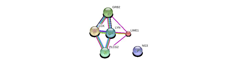 http://string-db.org/version_10/api/image/networkList?limit=0&targetmode=proteins&caller_identity=gene_cards&network_flavor=evidence&identifiers=9606.ENSP00000309521%0d%0a9606.ENSP00000428924%0d%0a9606.ENSP00000339007%0d%0a9606.ENSP00000337825%0d%0a9606.ENSP00000352336%0d%0a9606.ENSP00000463517%0d%0a