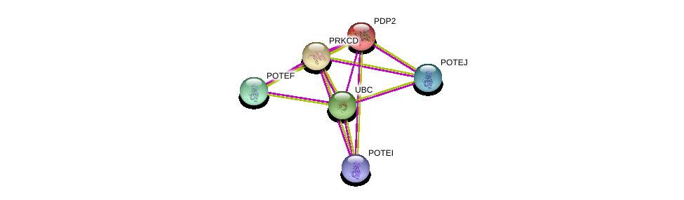 http://string-db.org/version_10/api/image/networkList?limit=0&targetmode=proteins&caller_identity=gene_cards&network_flavor=evidence&identifiers=9606.ENSP00000309548%0d%0a9606.ENSP00000344818%0d%0a9606.ENSP00000331602%0d%0a9606.ENSP00000350052%0d%0a9606.ENSP00000387176%0d%0a9606.ENSP00000392718%0d%0a