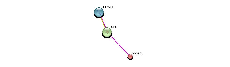 http://string-db.org/version_10/api/image/networkList?limit=0&targetmode=proteins&caller_identity=gene_cards&network_flavor=evidence&identifiers=9606.ENSP00000309640%0d%0a9606.ENSP00000344818%0d%0a9606.ENSP00000385269%0d%0a