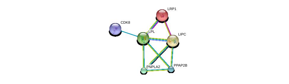 http://string-db.org/version_10/api/image/networkList?limit=0&targetmode=proteins&caller_identity=gene_cards&network_flavor=evidence&identifiers=9606.ENSP00000309757%0d%0a9606.ENSP00000243077%0d%0a9606.ENSP00000370938%0d%0a9606.ENSP00000360296%0d%0a9606.ENSP00000337701%0d%0a9606.ENSP00000299022%0d%0a