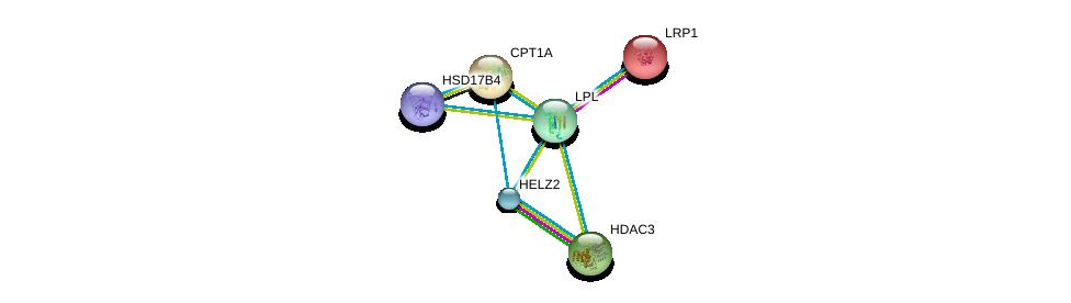 http://string-db.org/version_10/api/image/networkList?limit=0&targetmode=proteins&caller_identity=gene_cards&network_flavor=evidence&identifiers=9606.ENSP00000309757%0d%0a9606.ENSP00000243077%0d%0a9606.ENSP00000420914%0d%0a9606.ENSP00000302967%0d%0a9606.ENSP00000417401%0d%0a9606.ENSP00000265641%0d%0a