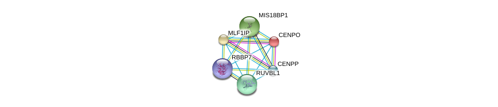 http://string-db.org/version_10/api/image/networkList?limit=0&targetmode=proteins&caller_identity=gene_cards&network_flavor=evidence&identifiers=9606.ENSP00000309790%0d%0a9606.ENSP00000318297%0d%0a9606.ENSP00000369424%0d%0a9606.ENSP00000281453%0d%0a9606.ENSP00000260662%0d%0a9606.ENSP00000364737%0d%0a