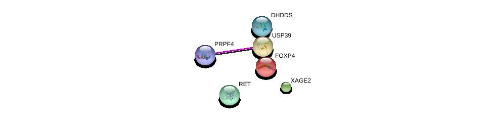 http://string-db.org/version_10/api/image/networkList?limit=0&targetmode=proteins&caller_identity=gene_cards&network_flavor=evidence&identifiers=9606.ENSP00000309823%0d%0a9606.ENSP00000363313%0d%0a9606.ENSP00000312981%0d%0a9606.ENSP00000353104%0d%0a9606.ENSP00000347942%0d%0a9606.ENSP00000333775%0d%0a
