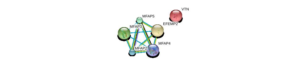 http://string-db.org/version_10/api/image/networkList?limit=0&targetmode=proteins&caller_identity=gene_cards&network_flavor=evidence&identifiers=9606.ENSP00000309953%0d%0a9606.ENSP00000322956%0d%0a9606.ENSP00000352455%0d%0a9606.ENSP00000378957%0d%0a9606.ENSP00000364685%0d%0a9606.ENSP00000226218%0d%0a
