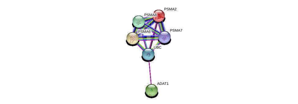 http://string-db.org/version_10/api/image/networkList?limit=0&targetmode=proteins&caller_identity=gene_cards&network_flavor=evidence&identifiers=9606.ENSP00000310015%0d%0a9606.ENSP00000344818%0d%0a9606.ENSP00000261479%0d%0a9606.ENSP00000223321%0d%0a9606.ENSP00000311121%0d%0a9606.ENSP00000359910%0d%0a