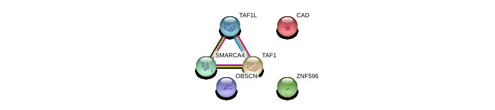 http://string-db.org/version_10/api/image/networkList?limit=0&targetmode=proteins&caller_identity=gene_cards&network_flavor=evidence&identifiers=9606.ENSP00000310033%0d%0a9606.ENSP00000264705%0d%0a9606.ENSP00000455507%0d%0a9606.ENSP00000418379%0d%0a9606.ENSP00000276072%0d%0a9606.ENSP00000350720%0d%0a