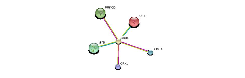 http://string-db.org/version_10/api/image/networkList?limit=0&targetmode=proteins&caller_identity=gene_cards&network_flavor=evidence&identifiers=9606.ENSP00000310036%0d%0a9606.ENSP00000339992%0d%0a9606.ENSP00000236147%0d%0a9606.ENSP00000331602%0d%0a9606.ENSP00000341206%0d%0a9606.ENSP00000346300%0d%0a