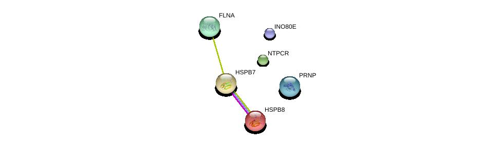 http://string-db.org/version_10/api/image/networkList?limit=0&targetmode=proteins&caller_identity=gene_cards&network_flavor=evidence&identifiers=9606.ENSP00000310111%0d%0a9606.ENSP00000281938%0d%0a9606.ENSP00000368752%0d%0a9606.ENSP00000358866%0d%0a9606.ENSP00000457016%0d%0a9606.ENSP00000355587%0d%0a