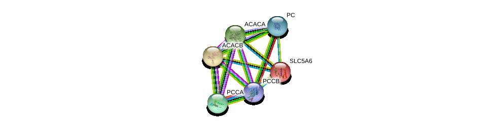 http://string-db.org/version_10/api/image/networkList?limit=0&targetmode=proteins&caller_identity=gene_cards&network_flavor=evidence&identifiers=9606.ENSP00000310208%0d%0a9606.ENSP00000419027%0d%0a9606.ENSP00000377527%0d%0a9606.ENSP00000365462%0d%0a9606.ENSP00000344789%0d%0a9606.ENSP00000341044%0d%0a