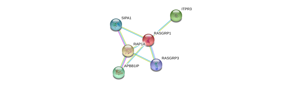 http://string-db.org/version_10/api/image/networkList?limit=0&targetmode=proteins&caller_identity=gene_cards&network_flavor=evidence&identifiers=9606.ENSP00000310244%0d%0a9606.ENSP00000363435%0d%0a9606.ENSP00000384192%0d%0a9606.ENSP00000377771%0d%0a9606.ENSP00000365411%0d%0a9606.ENSP00000348786%0d%0a