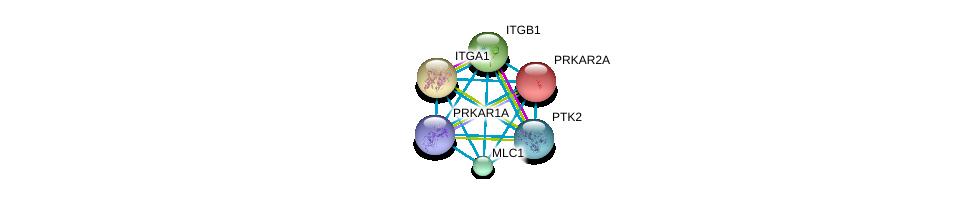 http://string-db.org/version_10/api/image/networkList?limit=0&targetmode=proteins&caller_identity=gene_cards&network_flavor=evidence&identifiers=9606.ENSP00000310375%0d%0a9606.ENSP00000303351%0d%0a9606.ENSP00000265563%0d%0a9606.ENSP00000341189%0d%0a9606.ENSP00000282588%0d%0a9606.ENSP00000351410%0d%0a