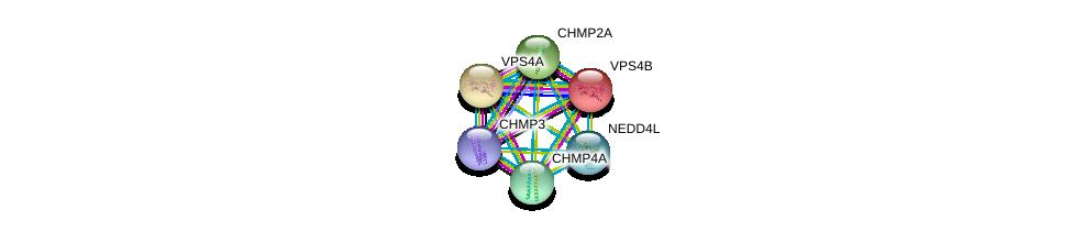 http://string-db.org/version_10/api/image/networkList?limit=0&targetmode=proteins&caller_identity=gene_cards&network_flavor=evidence&identifiers=9606.ENSP00000310440%0d%0a9606.ENSP00000405575%0d%0a9606.ENSP00000238497%0d%0a9606.ENSP00000254950%0d%0a9606.ENSP00000383199%0d%0a9606.ENSP00000324205%0d%0a