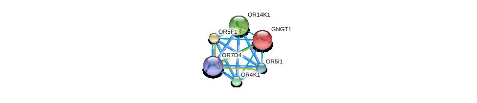 http://string-db.org/version_10/api/image/networkList?limit=0&targetmode=proteins&caller_identity=gene_cards&network_flavor=evidence&identifiers=9606.ENSP00000310488%0d%0a9606.ENSP00000248572%0d%0a9606.ENSP00000278409%0d%0a9606.ENSP00000283225%0d%0a9606.ENSP00000285600%0d%0a9606.ENSP00000301532%0d%0a