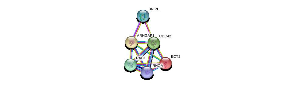http://string-db.org/version_10/api/image/networkList?limit=0&targetmode=proteins&caller_identity=gene_cards&network_flavor=evidence&identifiers=9606.ENSP00000310491%0d%0a9606.ENSP00000314458%0d%0a9606.ENSP00000400175%0d%0a9606.ENSP00000348461%0d%0a9606.ENSP00000357927%0d%0a9606.ENSP00000232458%0d%0a