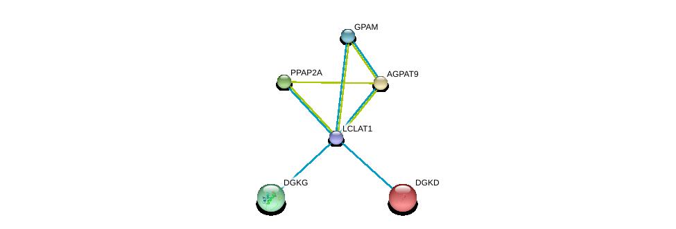 http://string-db.org/version_10/api/image/networkList?limit=0&targetmode=proteins&caller_identity=gene_cards&network_flavor=evidence&identifiers=9606.ENSP00000310551%0d%0a9606.ENSP00000264057%0d%0a9606.ENSP00000264409%0d%0a9606.ENSP00000264775%0d%0a9606.ENSP00000265022%0d%0a9606.ENSP00000265276%0d%0a