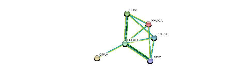 http://string-db.org/version_10/api/image/networkList?limit=0&targetmode=proteins&caller_identity=gene_cards&network_flavor=evidence&identifiers=9606.ENSP00000310551%0d%0a9606.ENSP00000265276%0d%0a9606.ENSP00000295887%0d%0a9606.ENSP00000419879%0d%0a9606.ENSP00000264775%0d%0a9606.ENSP00000329697%0d%0a