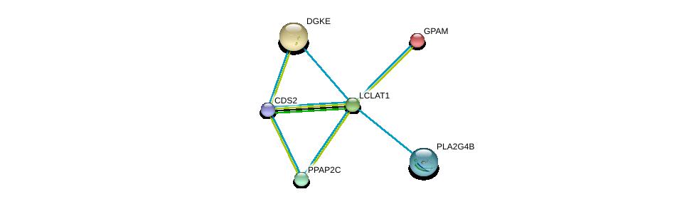 http://string-db.org/version_10/api/image/networkList?limit=0&targetmode=proteins&caller_identity=gene_cards&network_flavor=evidence&identifiers=9606.ENSP00000310551%0d%0a9606.ENSP00000419879%0d%0a9606.ENSP00000396045%0d%0a9606.ENSP00000329697%0d%0a9606.ENSP00000265276%0d%0a9606.ENSP00000284061%0d%0a