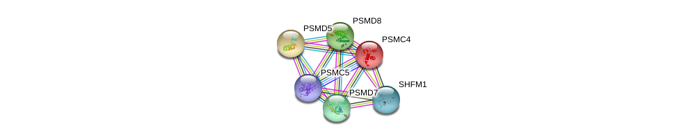 http://string-db.org/version_10/api/image/networkList?limit=0&targetmode=proteins&caller_identity=gene_cards&network_flavor=evidence&identifiers=9606.ENSP00000310572%0d%0a9606.ENSP00000157812%0d%0a9606.ENSP00000210313%0d%0a9606.ENSP00000215071%0d%0a9606.ENSP00000219313%0d%0a9606.ENSP00000248566%0d%0a