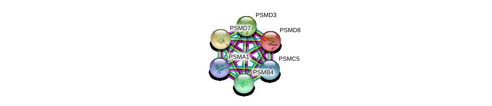 http://string-db.org/version_10/api/image/networkList?limit=0&targetmode=proteins&caller_identity=gene_cards&network_flavor=evidence&identifiers=9606.ENSP00000310572%0d%0a9606.ENSP00000290541%0d%0a9606.ENSP00000414359%0d%0a9606.ENSP00000215071%0d%0a9606.ENSP00000264639%0d%0a9606.ENSP00000219313%0d%0a